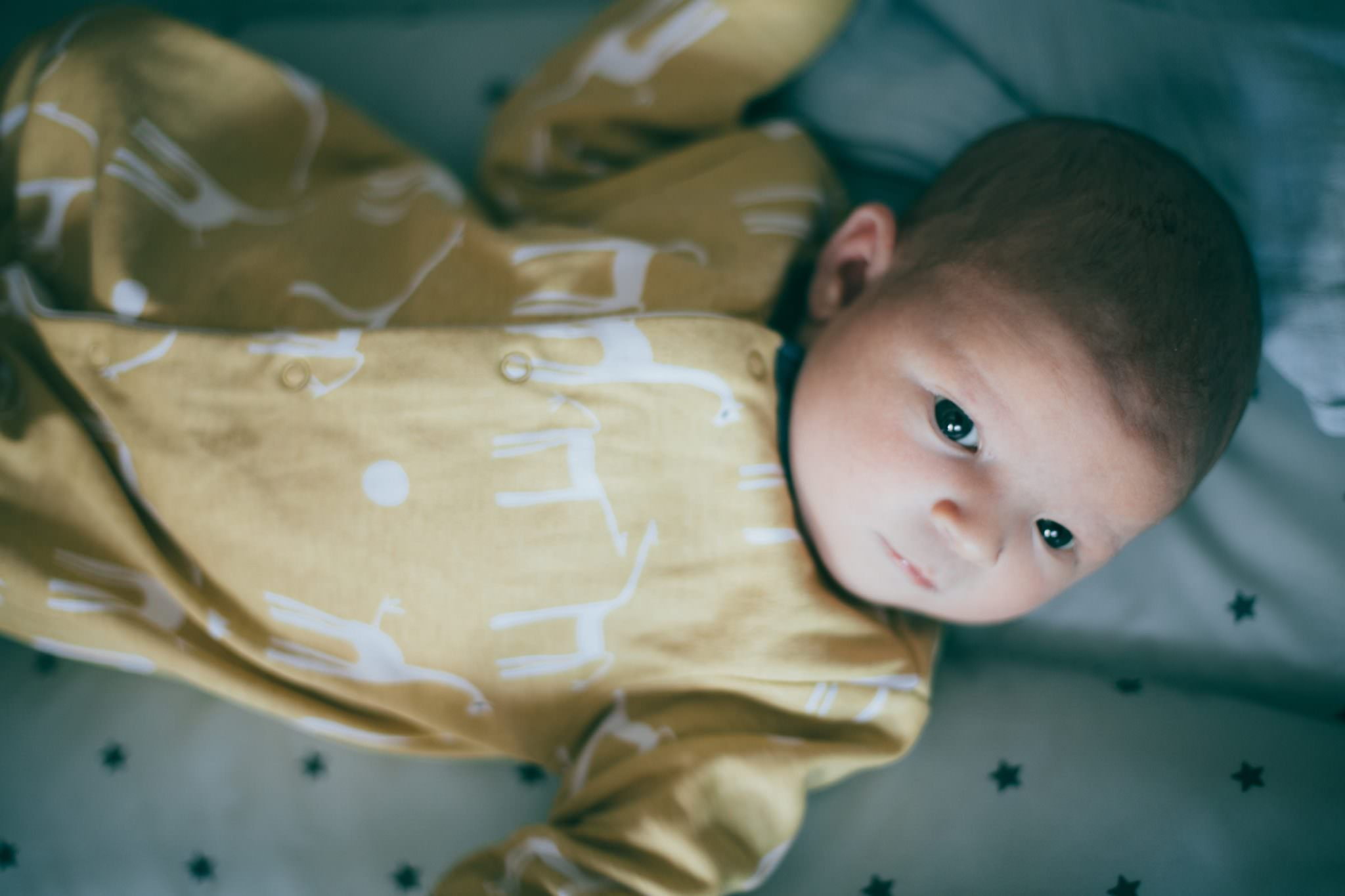 West Hampstead baby photography